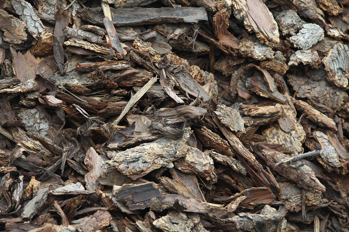 Large-Bark-Chips